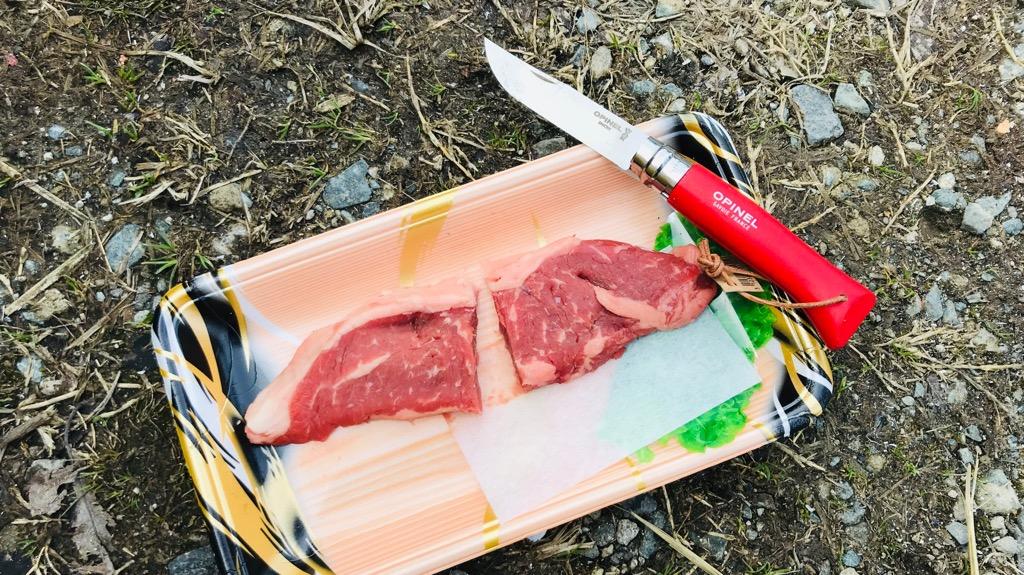 オピネルナイフのおすすめモデルは「ステンレス・革紐付き」