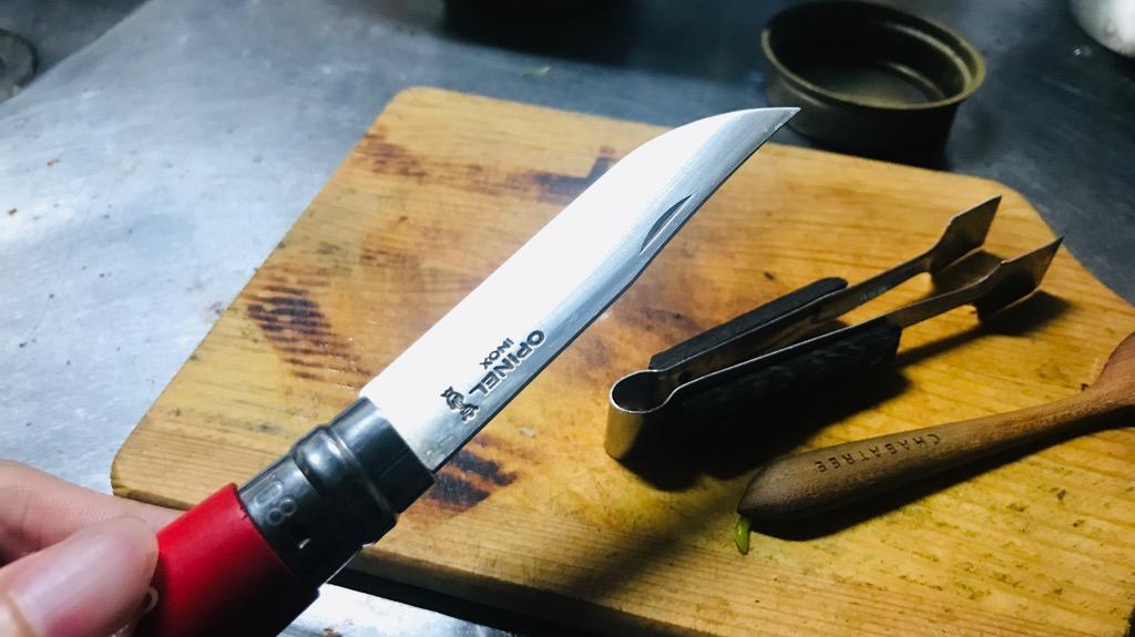オピネルナイフの良さは「世界の美品100特選」に選ばれるデザインの美しさ